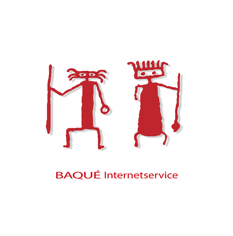 BAQUE Internetservice Webdesign in Kaiserslautern